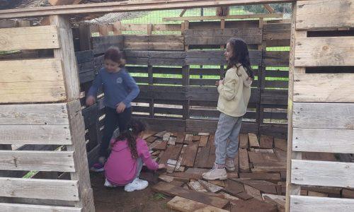 ריצוף בית עץ